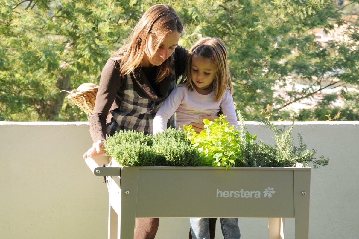Herstera Hochbeete Raschle Blumen Pflanzen Garten